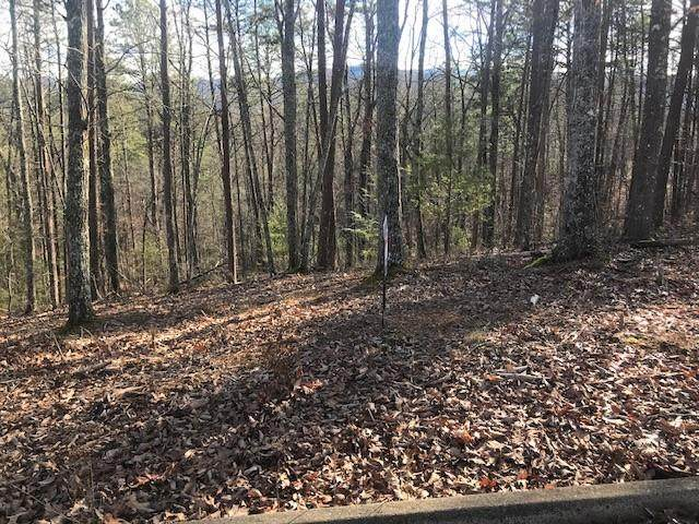Lot 34 Red Sky Drive, Sevierville, TN 37862 (#240410) :: Colonial Real Estate