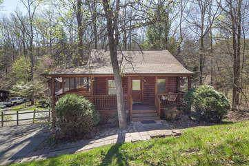 3002 Eagles Claw Way Beary Special, Pigeon Forge, TN 37863 (#242263) :: Century 21 Legacy