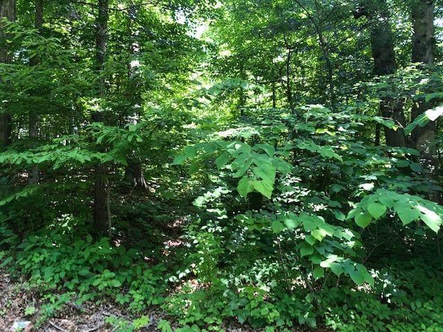 Lot 56 Hidden Hollow Way, Sevierville, TN 37862 (#242534) :: The Terrell-Drager Team
