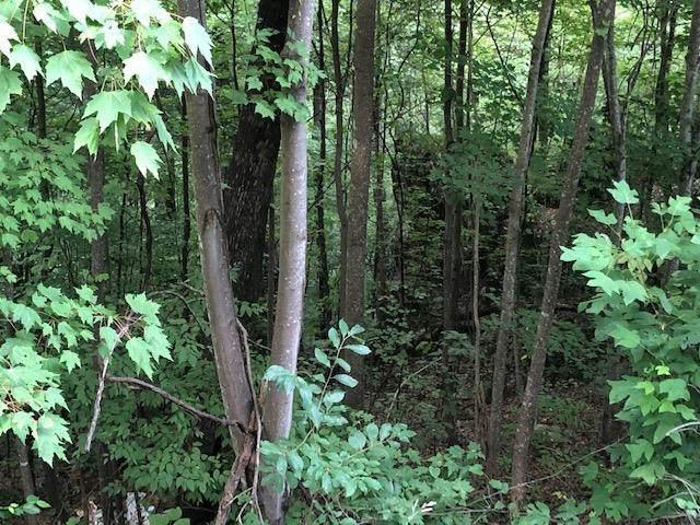 Overholt Trail Lot#10, Sevierville, TN 37862 (#244544) :: Century 21 Legacy