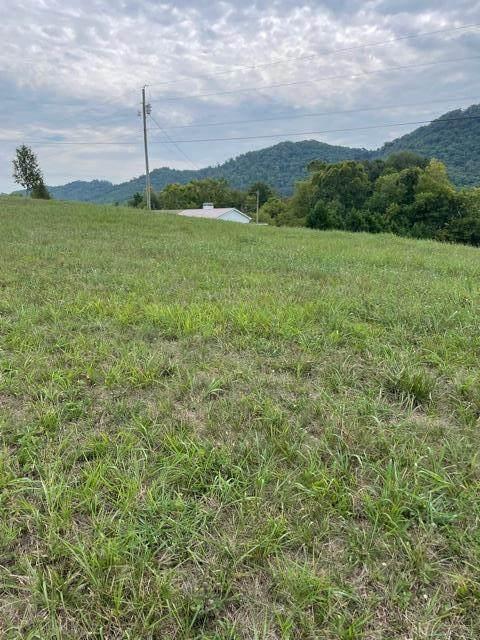 434 Webb Road, Rogersville, TN 37857 (#244687) :: Colonial Real Estate