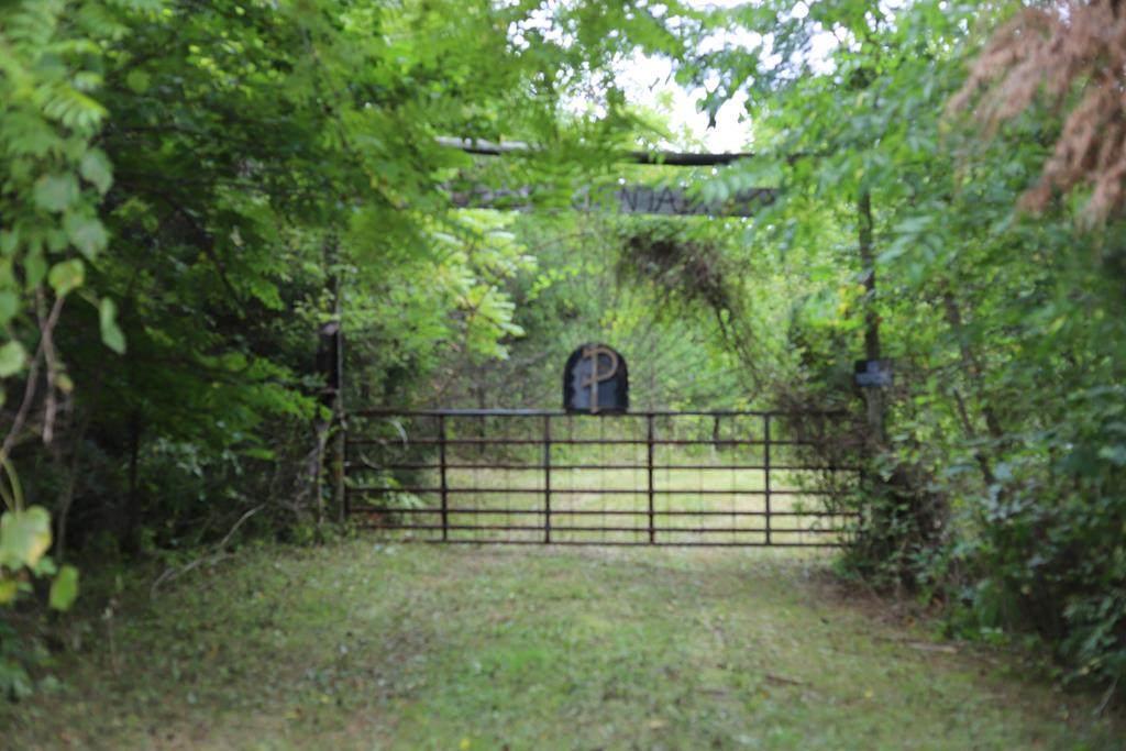 Guffy Hollow Road - Photo 1