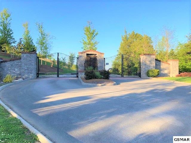 Lot 74 Grande Vista Drive, Dandridge, TN 37725 (#215749) :: Billy Houston Group