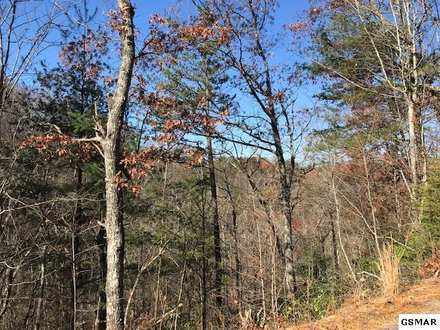 Blossom Hollow, Sevier County, TN 37876 (#218324) :: Billy Houston Group