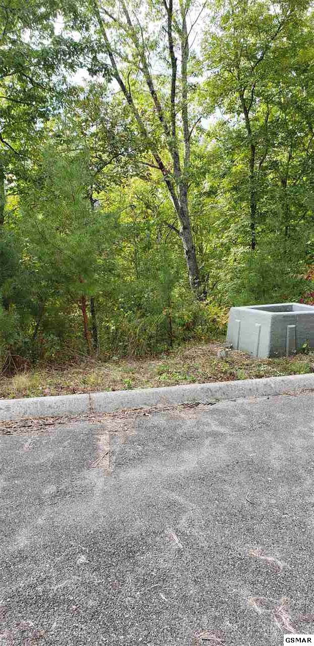 Lot 1 Happy Hollow Rd, Sevierville, TN 37862 (#225133) :: The Terrell Team