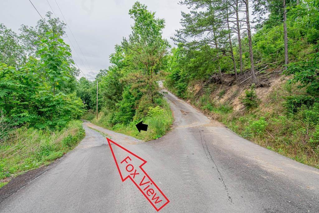 Fox View Lane - Photo 1