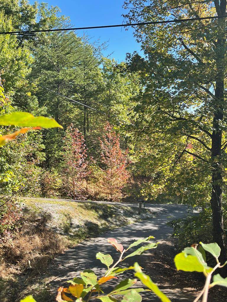 Overholt Trail Lot#10 - Photo 1