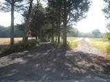 138 Kosciuszko Rd - Photo 7