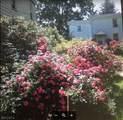 186 Spruce St - Photo 1