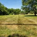 295 Cedar Grove Ln - Photo 1