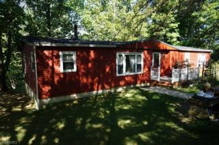 19 Mark Dr, High Bridge Boro, NJ 08829 (MLS #3333010) :: The Dekanski Home Selling Team