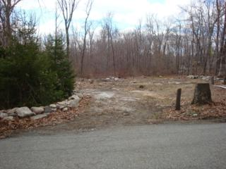 64 Lakeview Point Ave, Frankford Twp., NJ 07826 (MLS #3131551) :: The Dekanski Home Selling Team