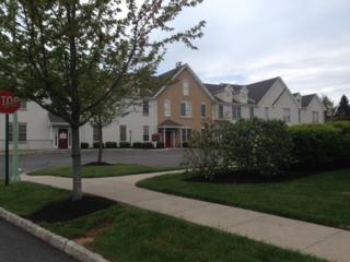 4 Walter E Foran Blvd, Raritan Twp., NJ 08822 (MLS #3139139) :: The Dekanski Home Selling Team