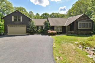 35 Rockburn Pass, West Milford Twp., NJ 07480 (MLS #3244771) :: The Dekanski Home Selling Team