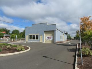 3230 Rt 22 West, Branchburg Twp., NJ 08876 (MLS #3253991) :: The Dekanski Home Selling Team