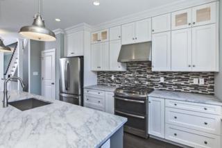 16 River Mills Drive, Frenchtown Boro, NJ 08825 (MLS #3266169) :: The Dekanski Home Selling Team