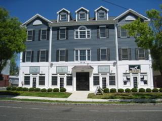 10-12 Elmer St, Unit C, Madison Boro, NJ 07940 (MLS #3279852) :: The Dekanski Home Selling Team