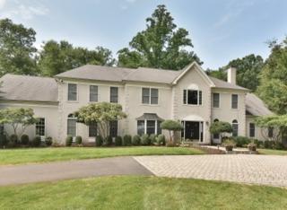 7 Howell Dr, Chester Twp., NJ 07930 (MLS #3282142) :: The Dekanski Home Selling Team