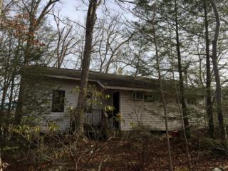 250 Ash Trl, Hardyston Twp., NJ 07462 (MLS #3290914) :: The Dekanski Home Selling Team
