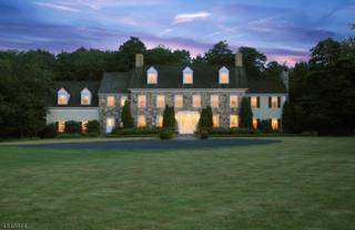 13 Glennon Farm Ln, Tewksbury Twp., NJ 08833 (MLS #3295705) :: The Dekanski Home Selling Team
