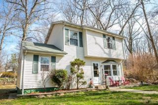 55 Highview Trl, Jefferson Twp., NJ 07885 (MLS #3296306) :: The Dekanski Home Selling Team