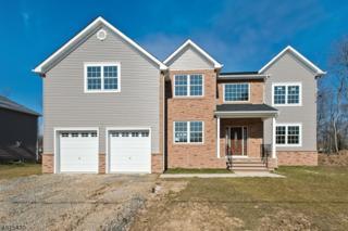 32 Pleasant Plains Rd, Franklin Twp., NJ 08823 (MLS #3296655) :: The Dekanski Home Selling Team
