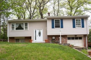 13 White Meadow Rd, Rockaway Twp., NJ 07866 (MLS #3297623) :: The Dekanski Home Selling Team