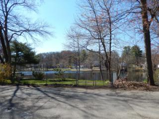 56 Lakeside Ave, Wanaque Boro, NJ 07420 (MLS #3299135) :: The Dekanski Home Selling Team