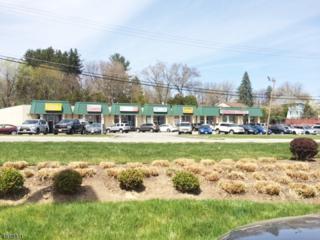 399 Us-46, Rockaway Twp., NJ 07866 (MLS #3299801) :: The Dekanski Home Selling Team