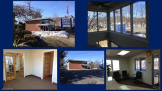 117 Lakeside Blvd, Roxbury Twp., NJ 07850 (MLS #3301435) :: The Dekanski Home Selling Team