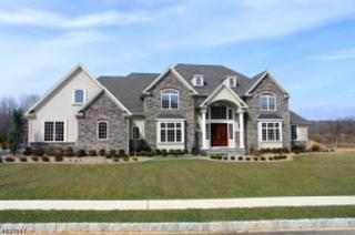 8 Philhower Ct, Denville Twp., NJ 07834 (MLS #3302777) :: The Dekanski Home Selling Team