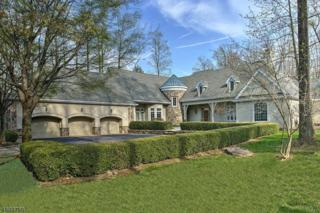 7 Old Mine Rd, Tewksbury Twp., NJ 08833 (MLS #3302842) :: The Dekanski Home Selling Team