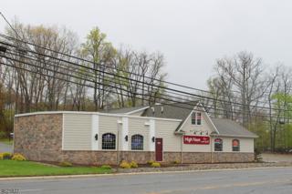 331 Us-46, Mount Olive Twp., NJ 07828 (MLS #3302980) :: The Dekanski Home Selling Team