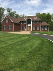 5 Lanning Way, Hillsborough Twp., NJ 08844 (MLS #3306707) :: The Dekanski Home Selling Team
