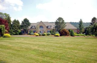187 Asbury West Portal Rd, Bethlehem Twp., NJ 08802 (MLS #3306796) :: The Dekanski Home Selling Team