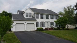63 Crenshaw Dr, Mount Olive Twp., NJ 07836 (MLS #3307807) :: The Dekanski Home Selling Team