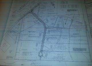 81 W Asbury Anderson Rd, Washington Twp., NJ 08827 (MLS #3309221) :: The Dekanski Home Selling Team