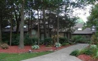 306 Ivy Ct, Franklin Lakes Boro, NJ 07417 (MLS #3311991) :: The Dekanski Home Selling Team