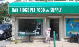 52-B Oak Ridge Rd, West Milford Twp., NJ 07438 (MLS #3314896) :: The Dekanski Home Selling Team