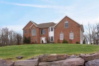 3 Pasha Ct, Rockaway Twp., NJ 07435 (MLS #3315107) :: The Dekanski Home Selling Team