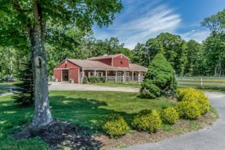 83 Pine Hill Rd, Delaware Twp., NJ 08559 (MLS #3315927) :: The Dekanski Home Selling Team