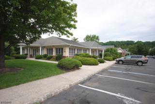 27 Mountain Blvd, Warren Twp., NJ 07059 (MLS #3316080) :: The Dekanski Home Selling Team