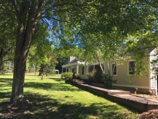 3 Blazier Rd, Warren Twp., NJ 07059 (MLS #3316476) :: The Dekanski Home Selling Team