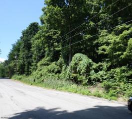 19-21 Tanglewood Dr, Vernon Twp., NJ 07422 (MLS #3316845) :: The Dekanski Home Selling Team