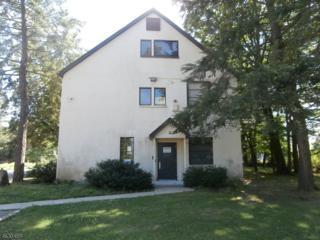 301 Rockaway Valley Rd, Boonton Twp., NJ 07005 (MLS #3320070) :: The Dekanski Home Selling Team
