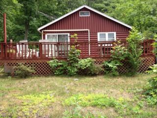 827 E Shore Rd, West Milford Twp., NJ 07421 (MLS #3320173) :: The Dekanski Home Selling Team