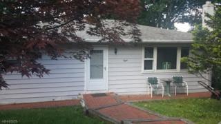 8 Saint Lo Pl, Hopatcong Boro, NJ 07843 (MLS #3320185) :: The Dekanski Home Selling Team