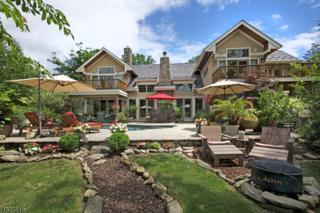 3 Cub Lake Rd, Byram Twp., NJ 07821 (MLS #3320651) :: The Dekanski Home Selling Team