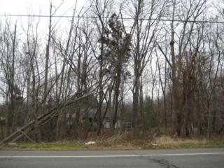 Lot 38 Union Ave, Bridgewater Twp., NJ 08807 (MLS #3320792) :: The Dekanski Home Selling Team