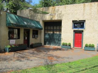 200 Washington St, Rocky Hill Boro, NJ 08553 (MLS #3320899) :: The Dekanski Home Selling Team